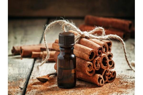 Tìm hiểu Nồi chiết xuất tinh dầu và các loại tinh dầu dành cho thời tiết nồm ẩm