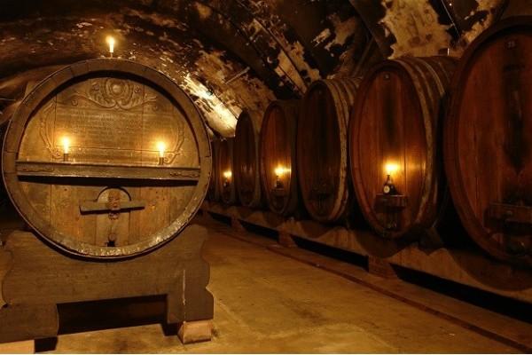 Câu chuyện về thùng gỗ sồi trong ngành sản xuất rượu vang